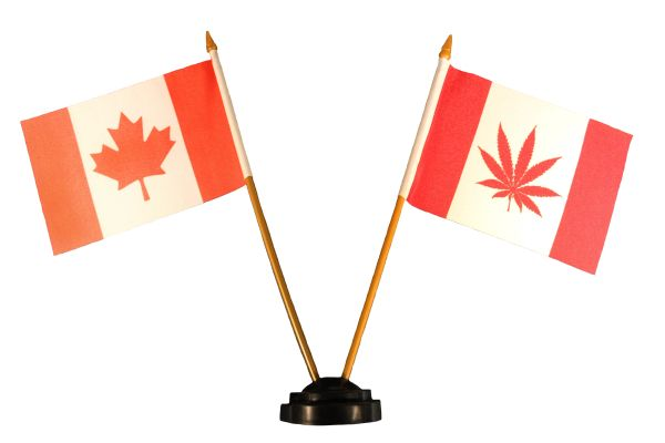 """CANADA & CANADA Red MARIJUANA LEAF 4"""" X 6"""" Inch Mini DOUBLE STICK FLAG BANNER With Black STAND On A 10 Inch Plastic POLE"""