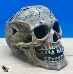 Fish Tank Human Skull Aquarium Ornament Large Cave Decoration Bowl