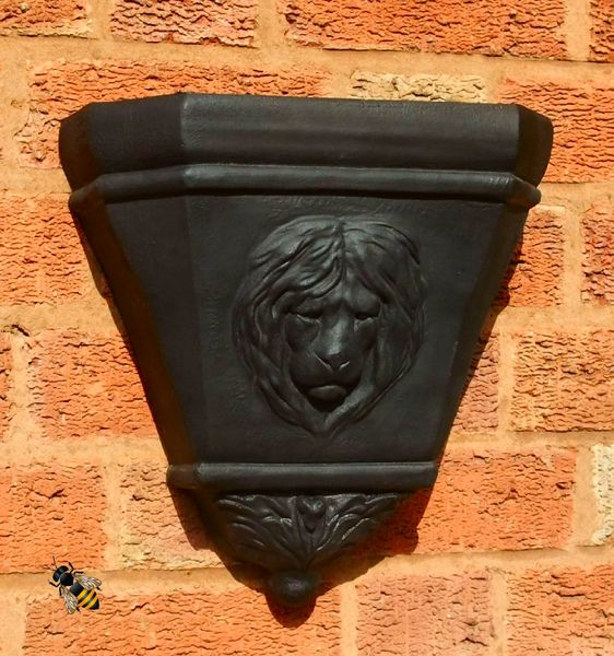 Wall Planter Rain Water Hopper Lion Head Large Garden Flower Pot
