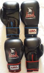 Boxing Gloves (UGA)