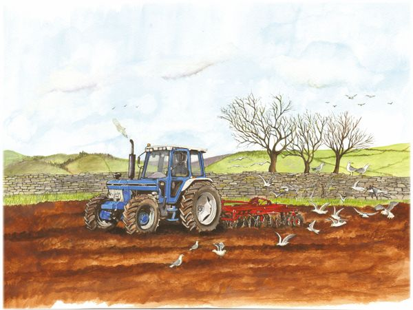 A FORD 7810 WORKING THE FIELD ..By SUE PODBERY