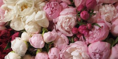 Peony colors ranging from vintage whites to magenta pinks