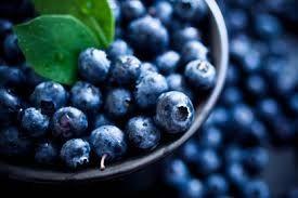 26 Blueberry Small Spray