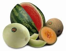 R78 Melon Diffuser Oil