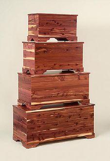 101 Cedar Incense Sticks