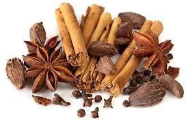 102 Cinnamon Spice Small Spray