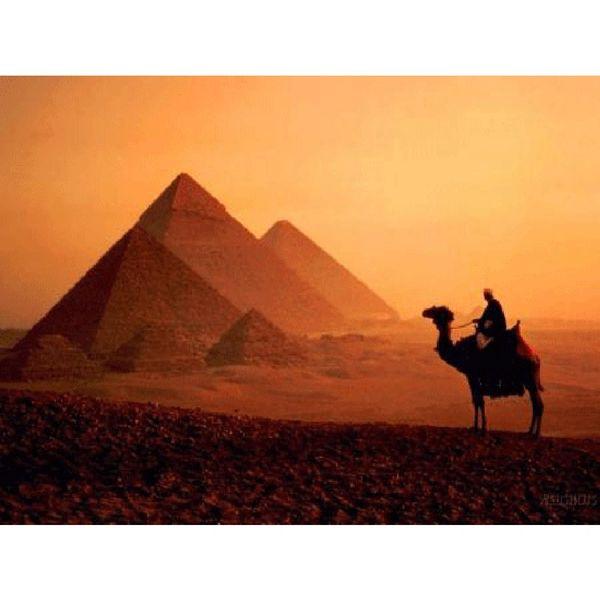 117 Egyptian Musk Small Spray
