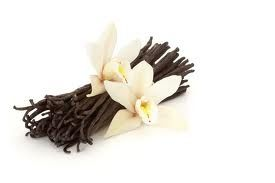 24 Vanilla Incense Cone