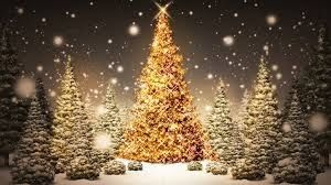 25 Christmas Tree Large Scented Gel