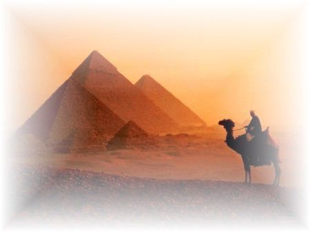 117 Egyptian Musk Large Scented Gel