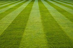118 Fresh Cut Grass Large Scented Gel