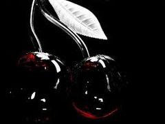 14 Black Cherry Small Spray