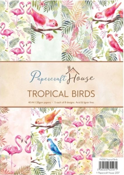 Wild Rose Studio Papercraft House A4 Paper Pack Tropical Birds