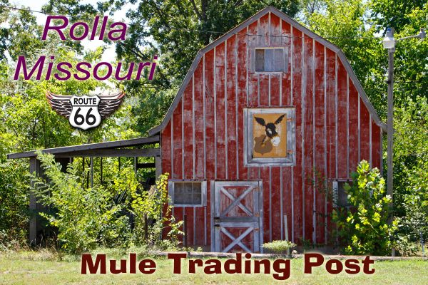 Route 66 fridge magnet featuring Mule Trading Post in Rolla, MO