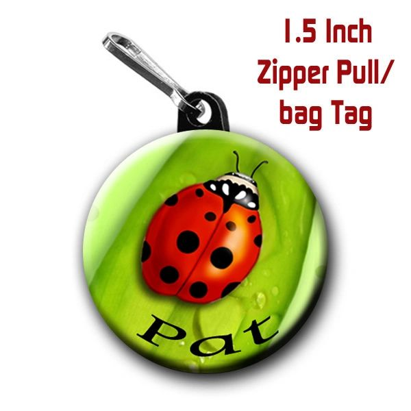 Lady Bug zipper pull, pin, or magnet personalized with name of choice CH569