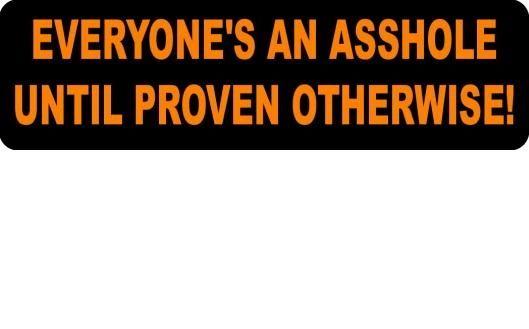 Helmet sticker - everyone's an asshole