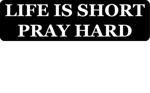 Helmet sticker - Life is short