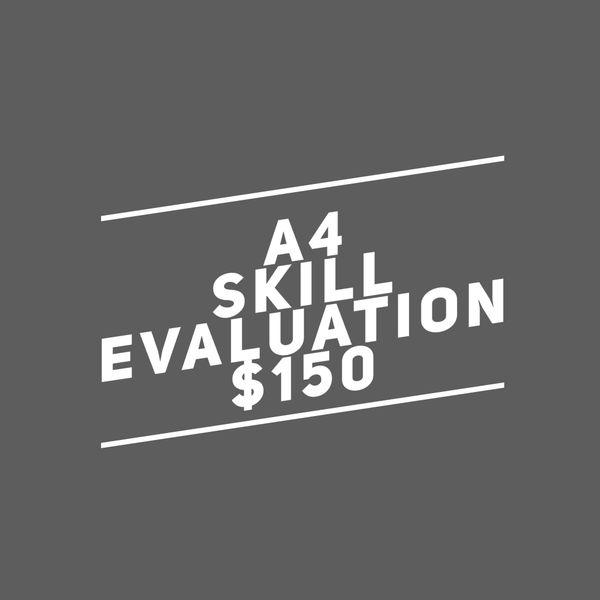 A4. Skill Evaluation