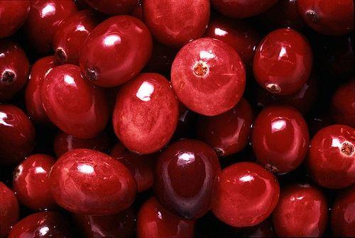 Cranberry Walnut Aged Dark Balsamic