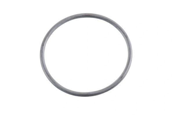 EGR Valve O-Ring 2008-2010
