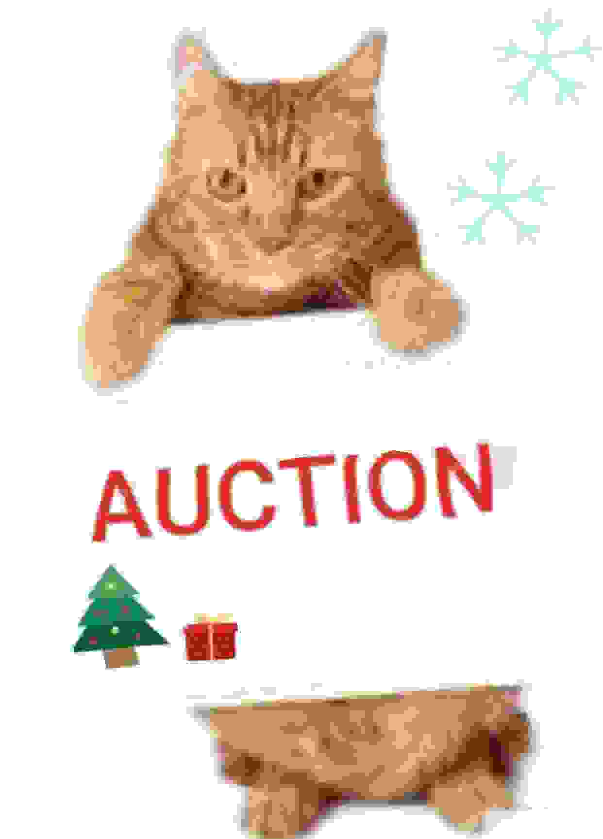 AUCTION NOVEMBER 27-December 6