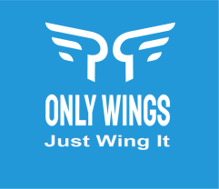 ONLY WINGS