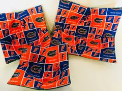 Microwaveable Bowl Cozy / Florida Gators