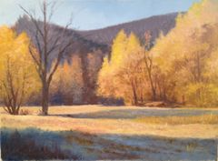 Turkey Creek Fall 16x22