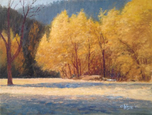 Turkey Creek Autumn Glow 12x16 SOLD