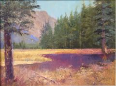 High Country Meadow 11x14