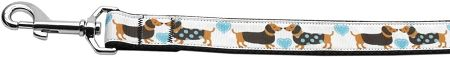 Dog Leashes: DOXIE LOVE Nylon Dog Leash Mirage Pet Products USA