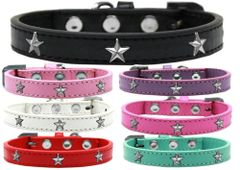 Widget Dog Collars: Cute SILVER STAR WIDGET Dog Collar in Various Sizes and Colors
