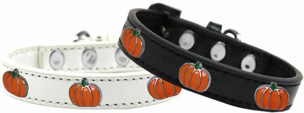Widget Dog Collars: Cute Black or White PUMPKIN WIDGET Dog Collar in Various Sizes