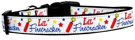 Dog Collars: Nylon Ribbon Dog Collar LITTLE FIRECRACKER - Matching Leash Sold Separately