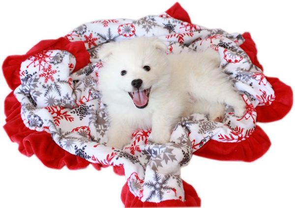 Dog Blankets: CHRISTMAS Pet Blankets Luxurious Fabric Washable Reversible Sizes From Carrier to Jumble - RED SNOWFLAKE