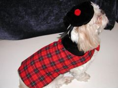 Dog Coats: Scottish Plaid Dog Coat & Matching Beret Set Red Broadcloth Handmade USA