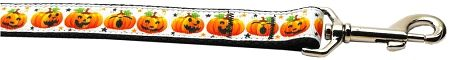 Nylon Dog Leashes: Pumpkin Parade Nylon Dog Leash Mirage Pet Products USA