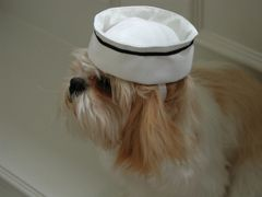 Dog Hats: White Canvas Sailor's Hat for Dogs Made in USA by Alexis