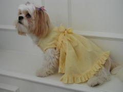 Dog Dresses: Handmade Bright Yellow SUMMER SUNSHINE Gingham Dog Dress by Alexis USA