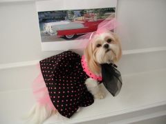 Dog Dresses: Handmade I LOVE LUCY Cotton Dog Dress with Petticoat by Alexis USA