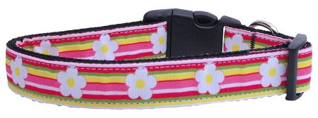 Dog Collars: Nylon Ribbon Collar STRIPED DAISY by Mirage Pet Products USA - Matching Leash Sold Separately