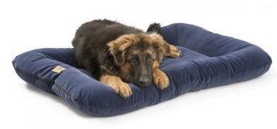 Dog Beds: Heyday Bed with Microsuede Dog Bed XL EXTRA LARGE Heavy Duty Stain Resistant West Paw Design USA