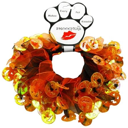 Smoochers Dog Collars: Smoocher Dog Collar/Dog Scrunchies/Party Collar - PUMPKINS