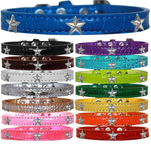 Dog Collars: Cute Dog Collar with SILVER STAR Widgets on Croc Dog Collar in Various Colors & Sizes