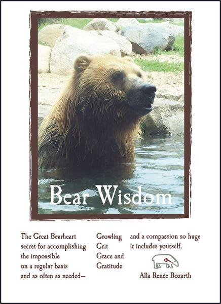 Bear Wisdom - Soul Card