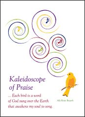 Kaleidoscope of Praise - Soul Card