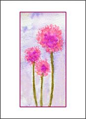 Pink Cornflowers - Watercolor