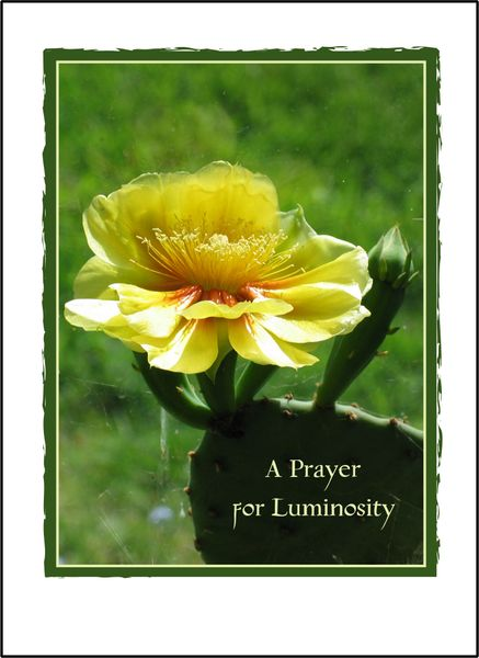 A Prayer for Luminosity - Soul Card
