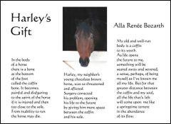 Harley's Gift - Soul Card