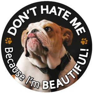 Don't Hate Me Because I'm Beautiful Circle Magnet